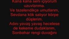 Zülfü Livaneli-Nesine Yar Nesine
