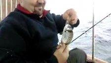 izmir balık avı