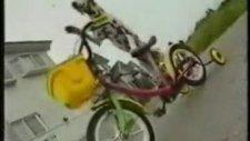 bisiklete binen köpek..