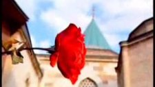 Nihavend Makamı Ezan - Mehmet Erarabacı