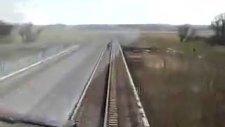 öküzün trene son bakışı !!
