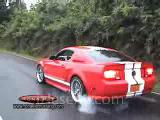 mustang shellby gt 500 or elanor