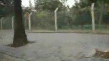 Keşir- Seni Sevdim Gülüm-2010