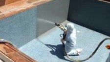 polyurea püskürtme su yalıtımı