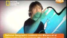 Macaco - Moving - Un Vdeo De Msica