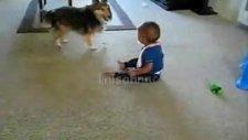 bebek ile köpeğin oyunu!