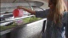 battaniye yıkama makinası
