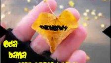 Sevmek Benim Hakkım Degilmi Shekil Jojuk