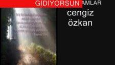 Cengiz Özkan Oy Akşamlar (Şiirli)