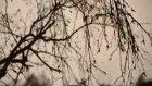 ilkay akkaya -- bir of çeksem video klip