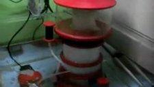 A-P Portal Dıy Protein Skimmer
