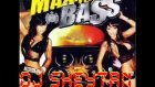 Dj Sheytan - Maximum Bass Control 2010 - 2011