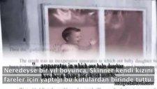 Psikoloji Tarihi - Bf Skinner