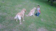 jessie ve kaan maçka parkı'nda oynarken