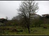Oruçoğlu Köyü-Şile