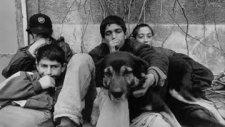 Sokak Çocukları  - Sokak Çocukları Rap