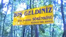Suşehri Sökün Köyü 2010 Piknik Görüntüleri-1