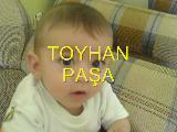 Toyhan Paşa