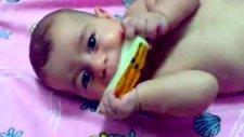 Kavuncu Bebe