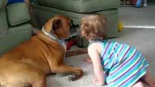Köpeğin Bebek Aşkı
