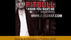 Dj Kesaf  - Pitbull  Know You Want Me Club Remix