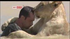 aslanlarla sıkı fıkı