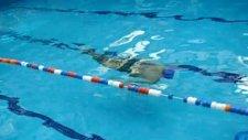 yüzme öğrenme dersi su altında nasıl gidilir