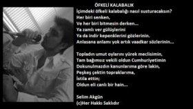 Selim Akgun - öfkeli Kalabalık
