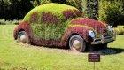 "Volkswagen Garbus ""Beetle"" by Bilge Baykuş"