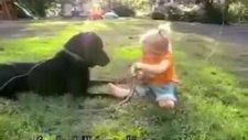 köpeğe kahkaha atan bebe :)
