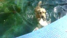 macka parki'nda havuz sefesi baska olur!