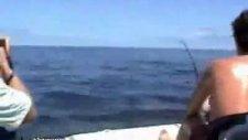 böyle balık avı gördünüz mü ?