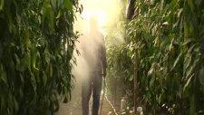Rca Tarım Yaprak Altı İlaçlama Tabancası
