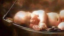 Bebeğin Doğumdan Bir Gün Önce Allah İle Görüşmesi