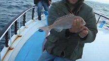 kuşadası balık turu kusadasibalikturu