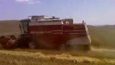 altınlı köyü 2010 hasat zamanı ferhat medya yapım