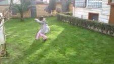 fırfır'ın bahçede ilk günü