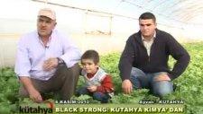 Kütahya Kimya - Black&Strong Marul Uygulaması