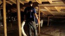 sprey poliüretan köpük ile çatı yalıtımı