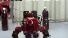 Real Transformer Robot Cherubım