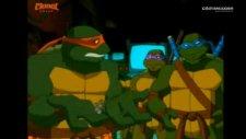 teanege mutant ninja turtles