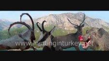 Hunting İn Turkey