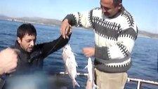 Kuşadası Balık Turu Kuşadası Balık Avı
