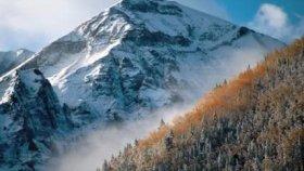Vuslat Ali - Yüce Dağ Başında Yanar Bir ışık