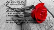 Kahretsin Sevmişim Gönlümü Vermişim