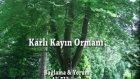 Karlı Kayın Ormanı...bağlama & Yorum Ali Elibüyük