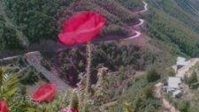 m.. özalp yine köyümü özledim... köy resimleri...ilhami koca