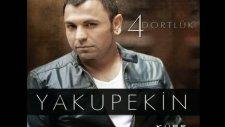 Yakup Ekin 4 Dörtlük 2011 - Deli