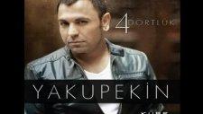 Yakup Ekin 2011 - Deli