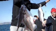 kuşadası balık turu kuşadası balık turu